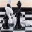 Jeu d'échecs Chessman® Elite
