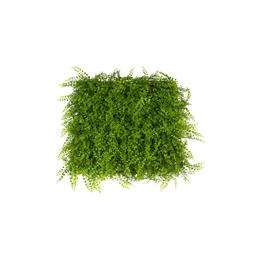 Mur végétal buis 1 x 1 m ou Mur végétal fougère 1 x 1 m